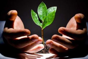7 советов о том, как привлечь инвестора